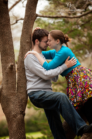 affectionate couple in tree on william and mary campus