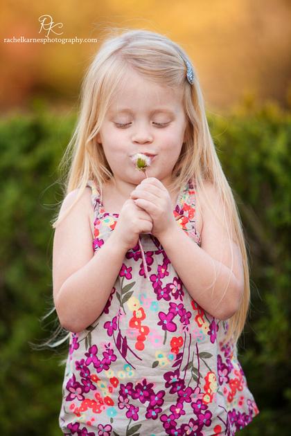 Little girl with dandelion in williamsburg garden