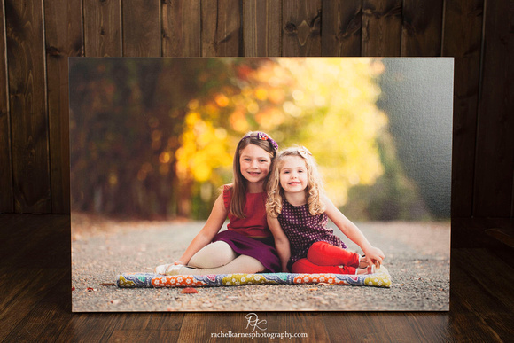 20X30 Canvas Gallery Wrap